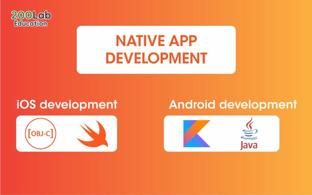 Việc phát triển native app